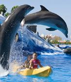 Aqualand Costa Adeje Tenerife