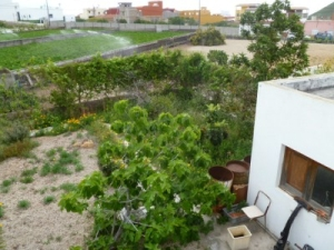 rural house for sale in Charco del Pino
